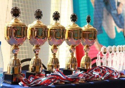 Десять дзюдоистов Донецкой Народной Республики отправились на турнир в Новочеркасск